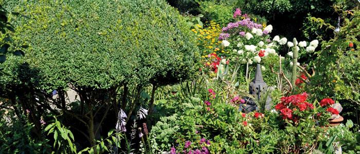 Bild aus dem Garten von Hannah Höch.