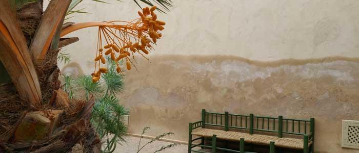 Gartenkunst in Marokko